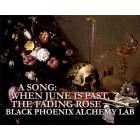 Black Phoenix Alchemy Lab A Song: When June is Past, the Fading Rose - унисекс аромат